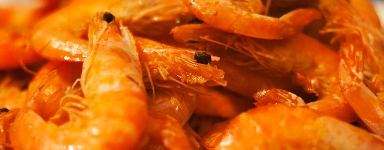 Креветки в чесночном соусе: еще одна идея для «гостя на пороге»