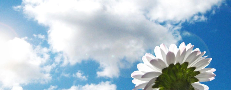 Дарите друг другу небо!