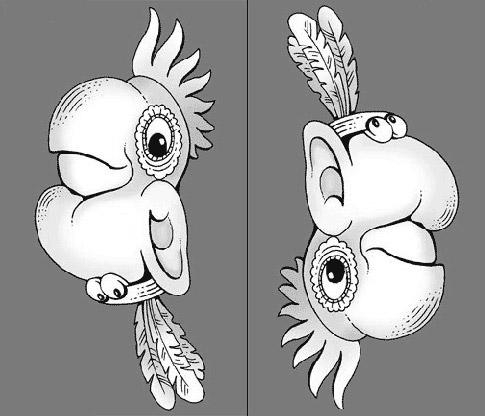 загадка про попугая и индейца
