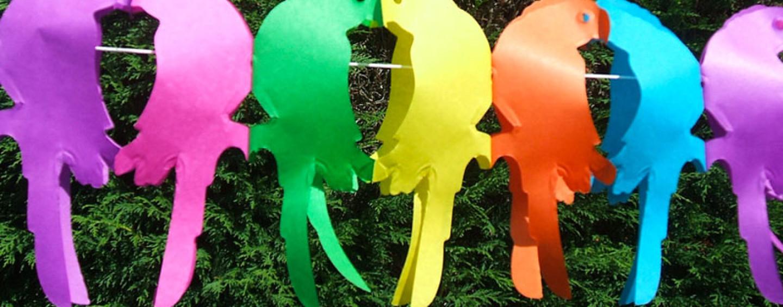 Летний день рождения на даче: сценарий для детей 6-10 лет