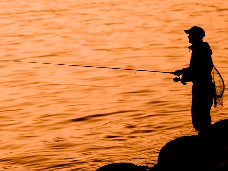 Вещий сон о корпоративной рыбалке