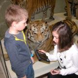 Детский квест в музее Дарвина