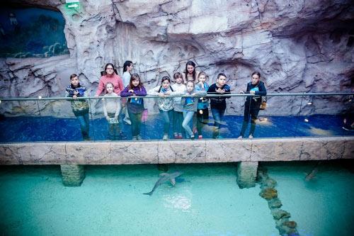 детский квест в океанариуме