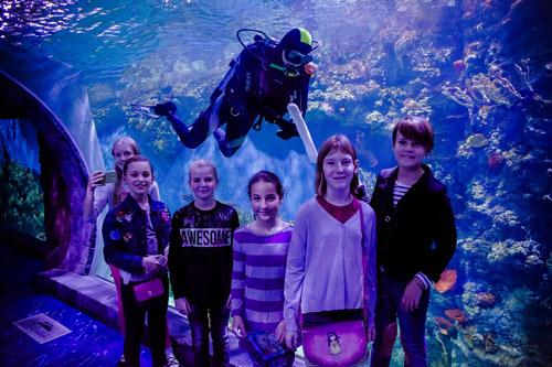 квест для детей в океанариуме