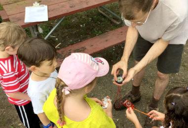 Профессия или хобби: практичные и полезные программы для детей 5-10 лет («МЧС», «Турист» и т.д.)