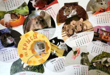 Конкурсы на год крысы для семейного праздника: квест «Календарь мышиного короля»