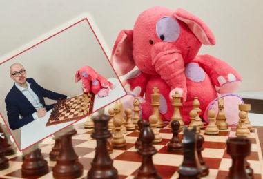 Шахматы для детей: обучение онлайн с опытным тренером и плюшевым персонажем