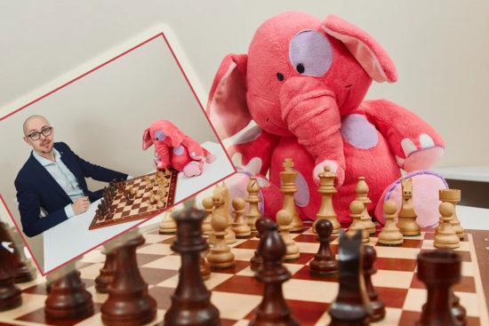 шахматы онлайн обучение